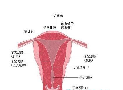 兴义治疗女性不孕需要怎样的方法